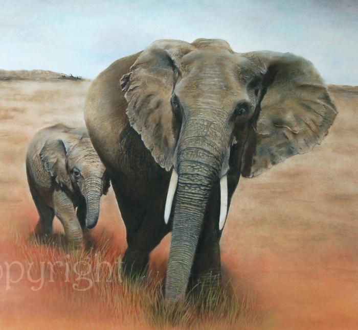 'Keeping up with Mum' open edition fine art giclee print from a pastel original. Fits a standard size frame. Order online and see more prints at www.AnimalSpiritArt.co.uk/wildlifeprints.html
