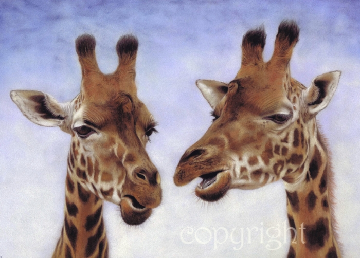 'Good Gossip' limited edition fine art giclee print from a pastel original. Fits a standard size frame. Order online and see more prints at www.AnimalSpiritArt.co.uk/wildlifeprints.html