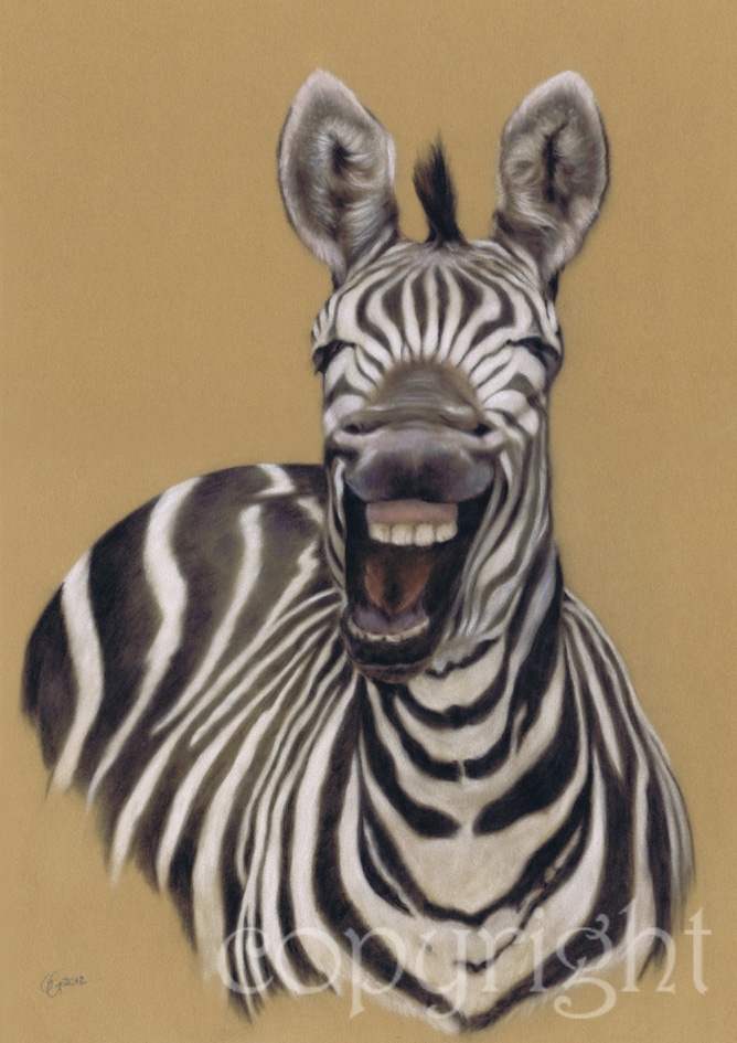 'Laughing Zebra' limited edition fine art giclee print from a pastel original. Fits a standard size frame. Order online and see more prints at www.AnimalSpiritArt.co.uk/wildlifeprints.html
