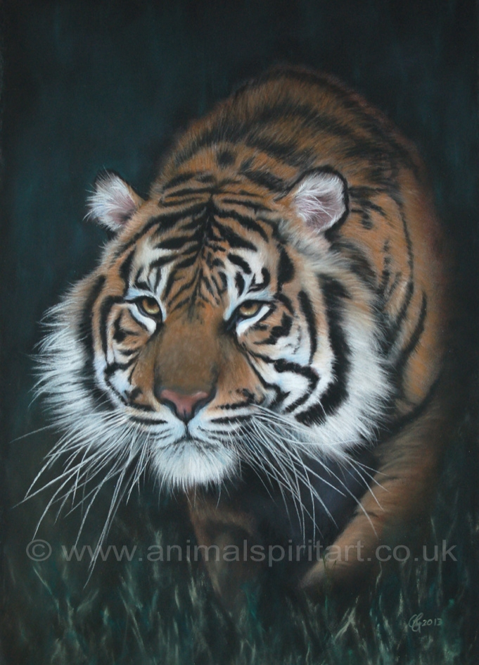 'Stalker in the Shadows' limited edition fine art giclee print from a pastel original. Fits a standard size frame. Order online and see more prints at www.AnimalSpiritArt.co.uk/wildlifeprints.html